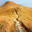 Stock Photo: Hiking path