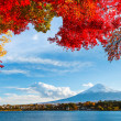 Mt. Fuji in autumn — Stock Photo #31667371
