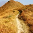 Hiking path on the mountain — Stock Photo