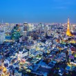 Tokyo cityscape at night — Stock Photo