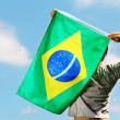 Brazil supporter holding flag — Stock Photo #32107381