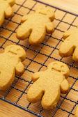Homemade gingerbread cookies — Stock Photo