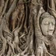 Buddhhead in banytree at Ayutthaya — Stock Photo #33162065