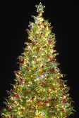 Christmas tree with decoration — Stock Photo