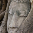 Buddhhead in banytree at Ayutthaya — Stock Photo #35463795