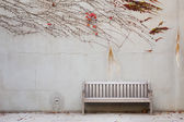 Relaxation with bench in garden — Stock Photo