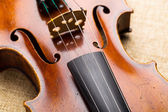 Western musical instrument, violin — Stock Photo