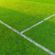 Stock Photo: Green turf for sport arena