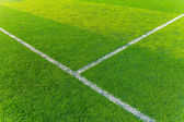 Green turf for sport arena — Stock Photo