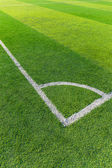 Soccer field grass with white line — Stock Photo