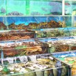 Seafood market fish tank in Hong Kong — Stock Photo