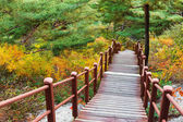 Wooden hiking path to the mountain — Stock Photo