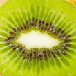 Stock Photo: Slices of green kiwi