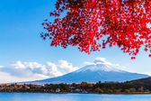 Mt. Fuji in autumn — Stock Photo