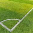Football court grass — Stock Photo #36861795