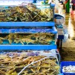 Seafood market fish tank — Stock Photo #36862491