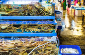 Seafood market fish tank — Stock Photo