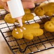 Stock Photo: Homemade gingerbread