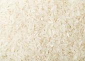 Asiatischer Reis — Stockfoto