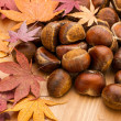 Stock Photo: Chestnut and maple leave