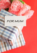 Mothers day with gift and carnation — Stock Photo