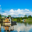 Wetland wityh sunny day — Stock Photo #39028519
