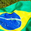 Stock Photo: Brazil flag on green glass