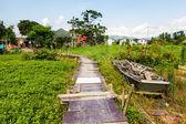 Wooden bridge through the mangrove reforestation — Foto de Stock