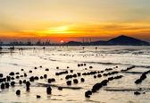 海の景色と夕焼け — ストック写真
