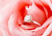 Pink Rose and diamond ring nestled inside — Stock Photo