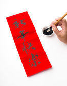 Chinese new year calligraphy — Stock fotografie