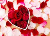 Rose flower inside heart shape bowl with petal beside — Foto de Stock