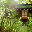 Japanese lantern in park — Stock Photo