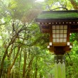 Stock Photo: Japanese lantern in park