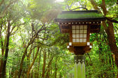 Japanese lantern in park — Foto Stock