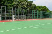футбольное поле и ворота — Стоковое фото