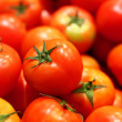 Group of tomato — Stock Photo
