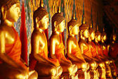 Row of golden buddha statue — Stock Photo