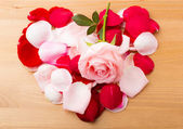 Rose and petals in heart shape — Stock Photo