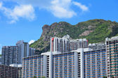 Hong Kong Housing under mountain Lion Rock — Stock Photo