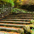 Stock Photo: Stone stair