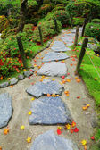 Pebble stone path with maple leaves in Japan garden — Stock Photo
