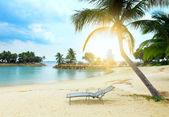 Kokosová palma a pláž — Stock fotografie