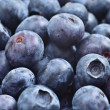 Blueberry — Stock Photo #40572387