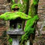 Traditional japanese stone lantern — Stock Photo