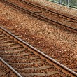 Railway — Stock Photo #40739673