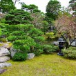 Stock Photo: Japanese style garden