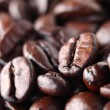 Coffee bean — Stock Photo #41187745