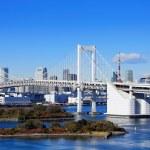 Tokyo bay — Stock Photo #41189483