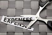 Expenses cut — Stock Photo